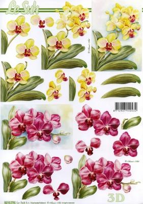 3D Bogen  - Format A4,  Blumen - Orchideen,  Le Suh,  Frühjahr,  3D Bogen,  Orchideen