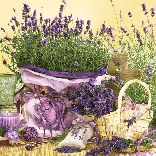 Servietten Blumenmotive,  Blumen - Lavendel,  Everyday,  lunchservietten,  Lavendel