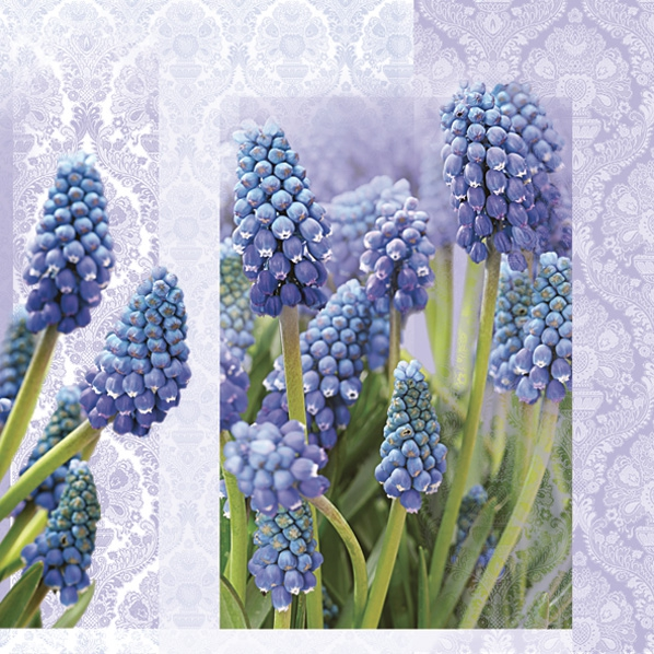 Lunch Servietten  MUSCARI Lila,  Blumen - Hyazinthen,  Everyday,  lunchservietten,  Hyazinthen