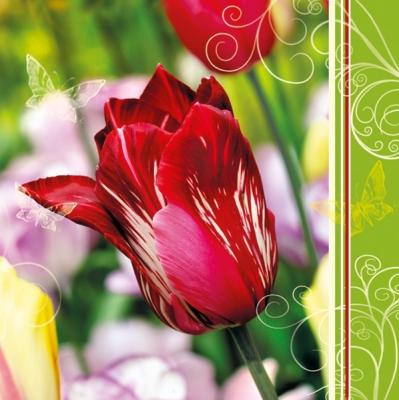 Servietten Frühjahr,  Blumen -  Sonstige,  Blumen - Tulpen,  Blumen,  Frühjahr,  lunchservietten