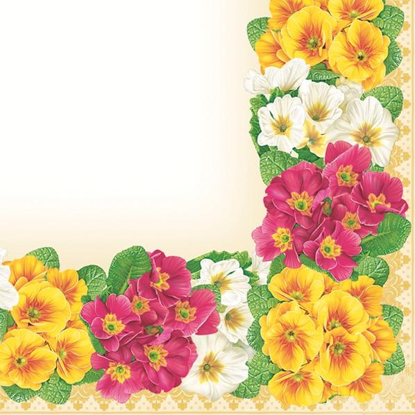 Servietten 33 x 33 cm,  Blumen - Primeln,  Frühjahr,  lunchservietten,  Primeln,  Rand