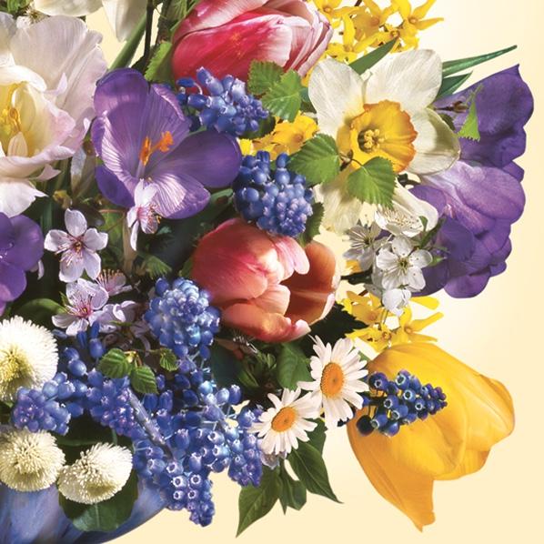 Lunch Servietten Frühlingsstrauß,  Blumen - Hyazinthen,  Blumen - Tulpen,  Frühjahr,  lunchservietten,  Hyazinthen,  Tulpen