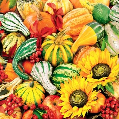 Lunch Servietten Sonnenblumen+Kürbisse