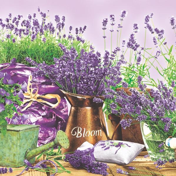 Lunch Servietten Lavendel,  Blumen - Lavendel,  Everyday,  lunchservietten