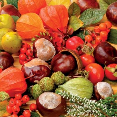 Servietten nach Motiven,  Früchte - Kastanien,  Everyday,  lunchservietten,  Kastanien