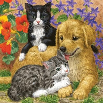 Lunch Servietten Hund und Katzen,  Blumen -  Sonstige,  Tiere - Katzen,  Tiere - Hunde,  Everyday,  lunchservietten,  Hund,  Katzen,  Blumen