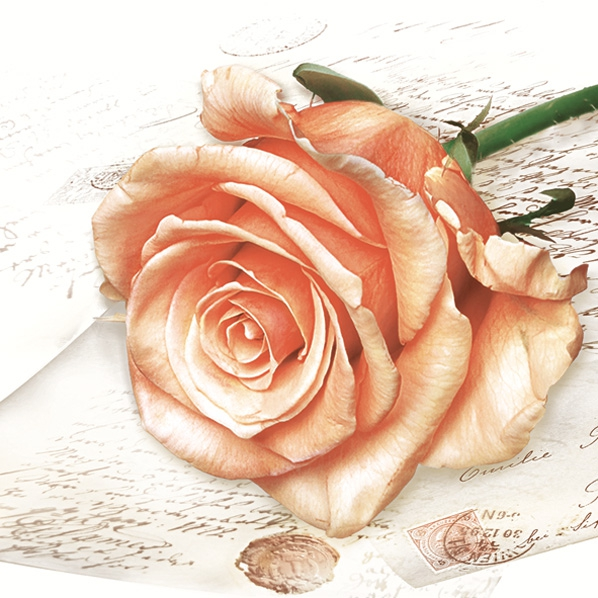 Lunch Servietten Rose,  Blumen - Rosen,  Everyday,  lunchservietten,  Rosen