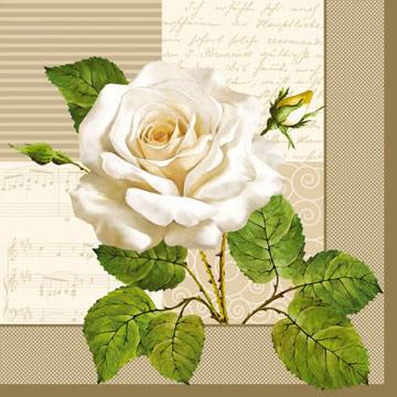 Lunch Servietten white roses of cream