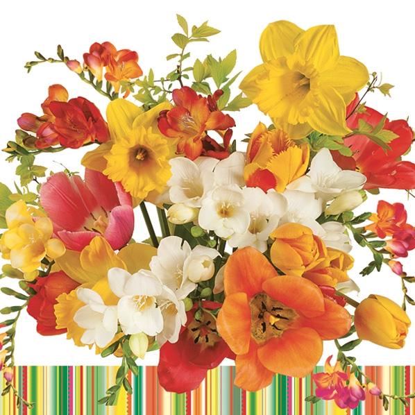Servietten 33 x 33 cm,  Blumen - Tulpen,  Blumen - Osterglocken,  Frühjahr,  lunchservietten,  Tulpen,  Narzissen
