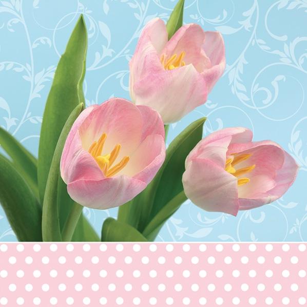 Servietten nach Jahreszeiten,  Blumen - Tulpen,  Frühjahr,  lunchservietten,  Tulpen