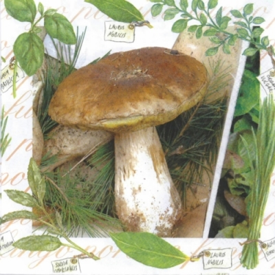 Nouveau Horeca,  Pflanzen - Küchenkräuter,  Sonstiges - Schriften,  Früchte - Pilze,  Herbst,  lunchservietten