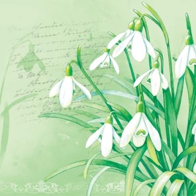 Lunch Servietten Snowdrops,  Blumen -  Sonstige,  Everyday,  lunchservietten,  Schneeglöckchen