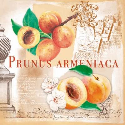 Lunch Servietten Prunus,  Früchte -  Sonstige,  Everyday,  lunchservietten,  Pfirsiche