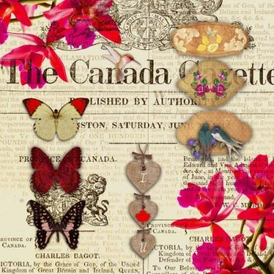 Nouveau Horeca,  Sonstiges -  Sonstiges,  Tiere - Schmetterlinge,  Everyday,  lunchservietten,  Zeitung,  Schmetterlinge