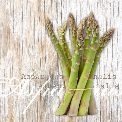 Lunch Servietten Asparagus,  Gemüse - Spargel,  Everyday,  lunchservietten,  Spargel