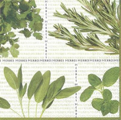 Servietten 25 x 25 cm,  Pflanzen - Küchenkräuter,  Everyday,  cocktail servietten,  Rosmarin,  Basilikum