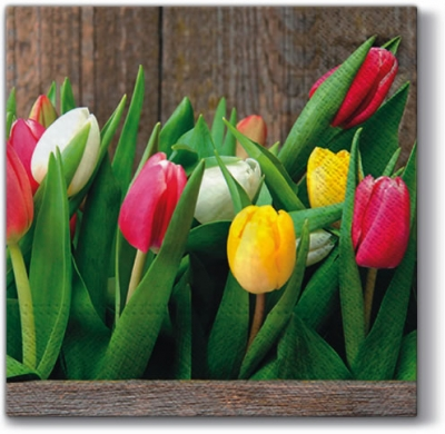 NEU im Shop,  Blumen - Tulpen,  Everyday,  lunchservietten,  Tulpen