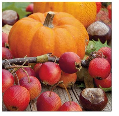 Servietten,  Früchte - Kürbisse,  Früchte - Kastanien,  Everyday,  lunchservietten,  Kastanien,  Kürbisse,  Beeren