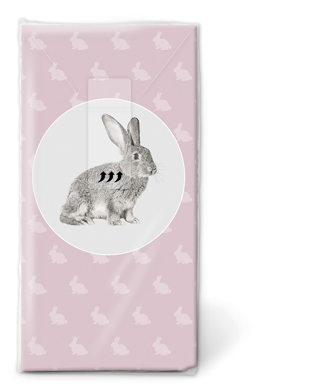 Taschentücher TT Portrait of rabbit