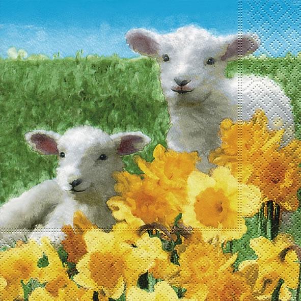 Servietten nach Motiven,  Regionen - Wald / Wiesen,  Tiere - Schafe,  Blumen - Osterglocken,  Ostern,  lunchservietten,  Narzissen,  Schafe