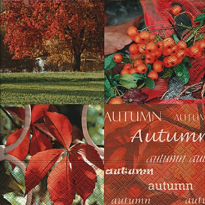 Paper+Design,  Früchte -  Sonstige,  Herbst - Blätter / Laub,  Herbst,  lunchservietten,  Beeren,  Kastanien,  Laubblätter