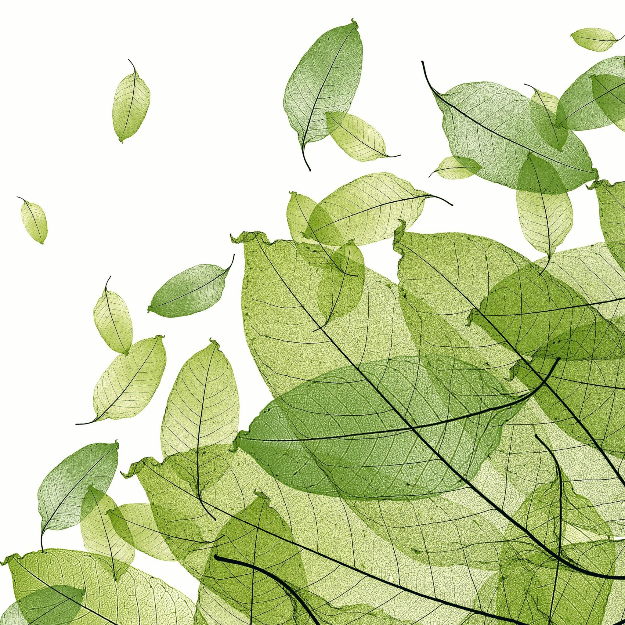 Servietten Herbst,  Herbst - Blätter / Laub,  Everyday,  lunchservietten,  Laub,  Laubblätter