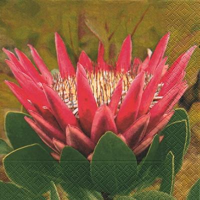 Servietten / Sonstige Blumen,  Pflanzen -  Sonstige,  Blumen -  Sonstige,  Everyday,  lunchservietten,  Blumen,  Pflanzen