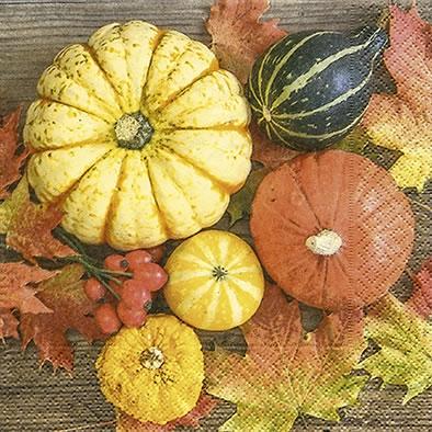 Lunch Servietten pumpkin collection,  Früchte - Kürbisse,  Herbst,  lunchservietten,  Kürbisse
