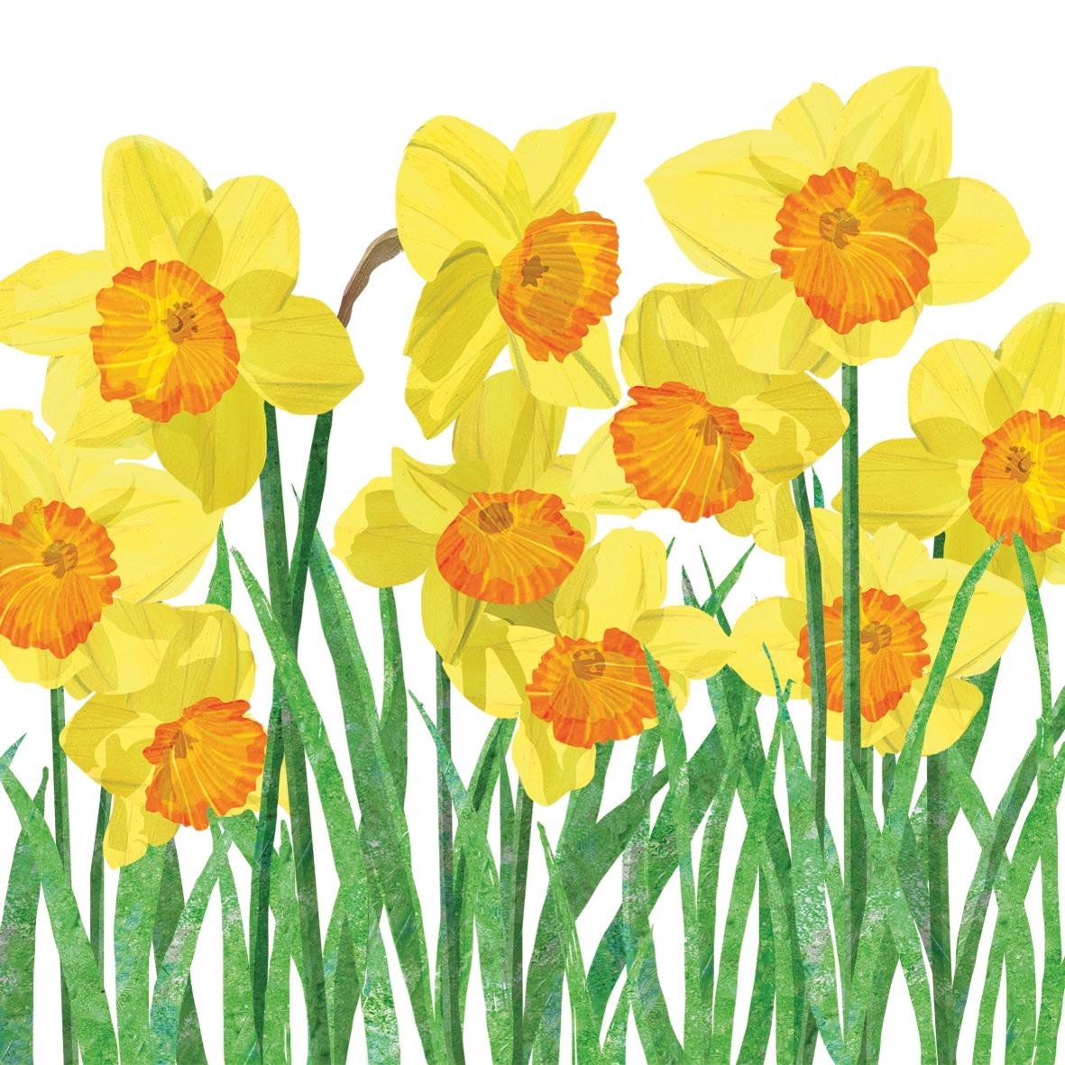 Cocktail Servietten Yellow Daffodils,  Blumen - Osterglocken,  Frühjahr,  cocktail servietten,  Narzissen