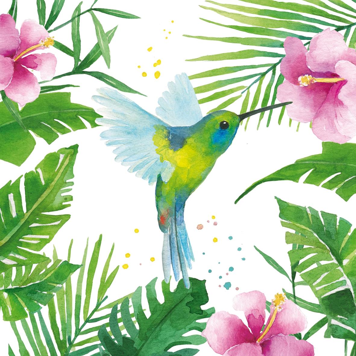 Colibri Hibiscus cocktail napkins tropical colibriwimmel napkins