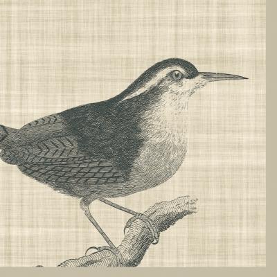 Lunch Servietten Botanical Bird,  Tiere - Vögel,  Everyday,  lunchservietten,  Vögel