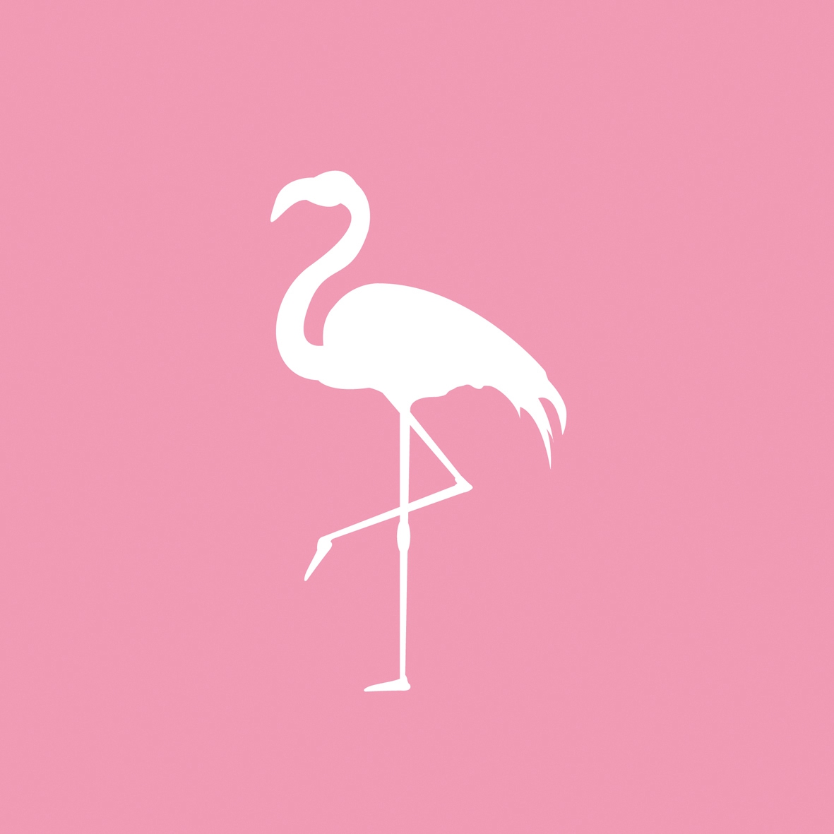Lunch Servietten Pink Flamingo,  Tiere - Vögel,  Everyday,  lunchservietten,  Flamingo