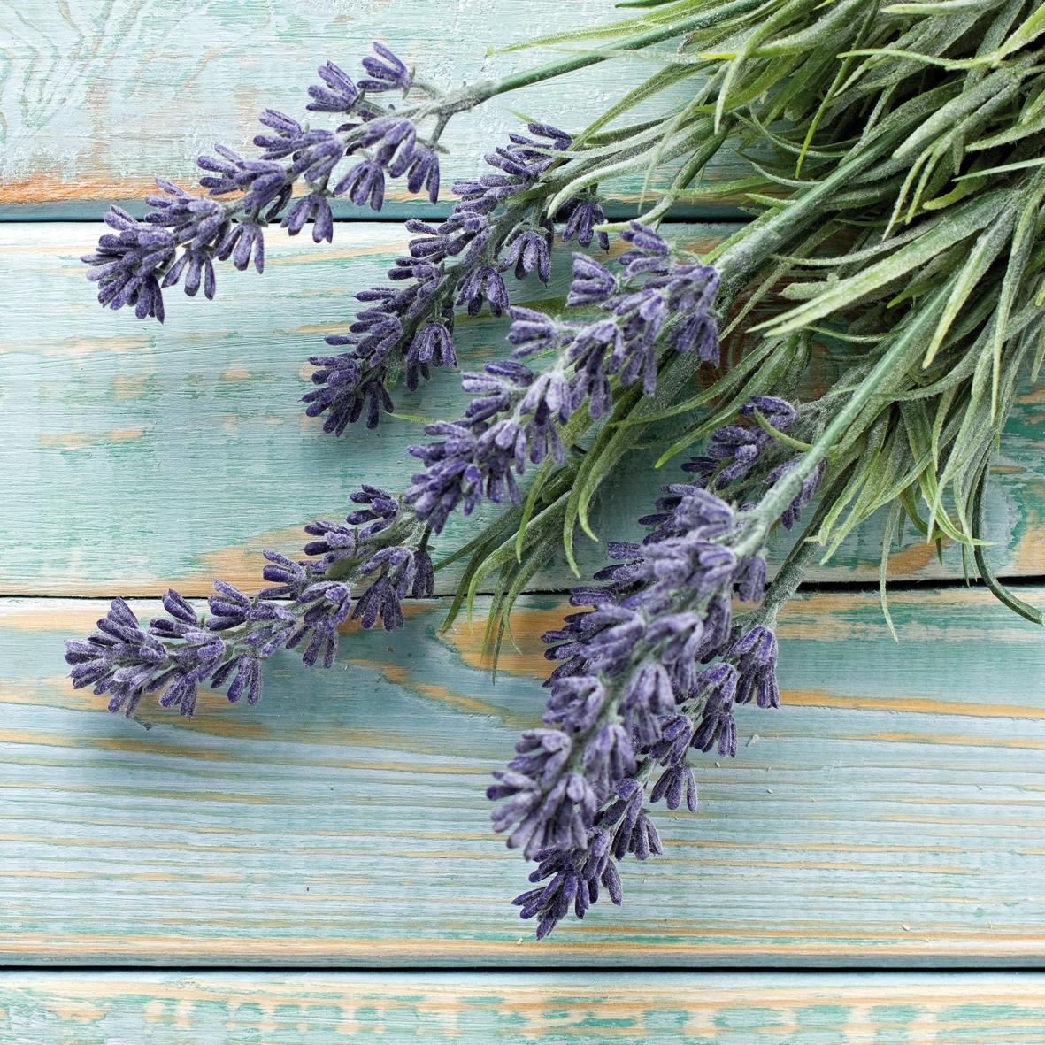 Lunch Servietten French Lavender,  Blumen - Lavendel,  Everyday,  lunchservietten,  Lavendel