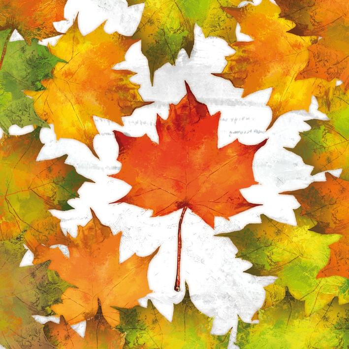 Paperproducts Design,  Herbst - Blätter / Laub,  Herbst,  lunchservietten,  Blätter