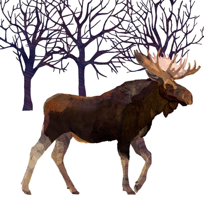 Lunch Servietten Winter Moose