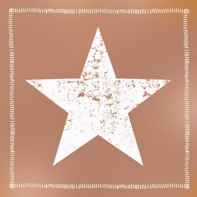 Lunch Servietten Star Fashion solid copper