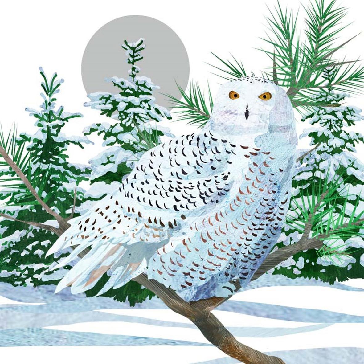 Servietten 33 x 33 cm,  Tiere -  Sonstige,  Weihnachten,  lunchservietten,  Eulen
