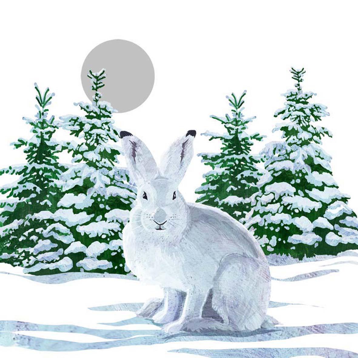 Lunch Servietten Snow Rabbit,  Tiere - Hasen,  Weihnachten,  lunchservietten,  Hasen