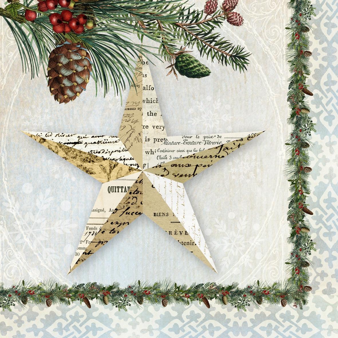 Lunch Servietten Winter Lodge Star,  Früchte - Zapfen,  Weihnachten - Sterne,  Weihnachten,  lunchservietten,  Sterne,  Zapfen