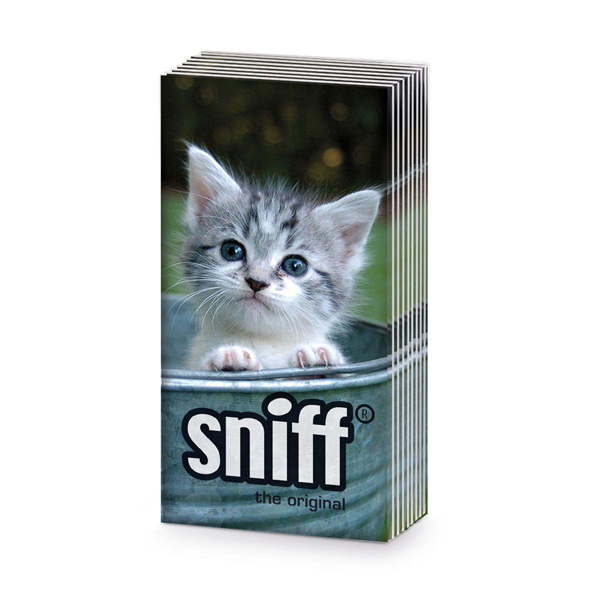 Taschentücher Sweet Kitty                       ,  Tiere,  Everyday,  bedruckte papiertaschentücher,  Katzen