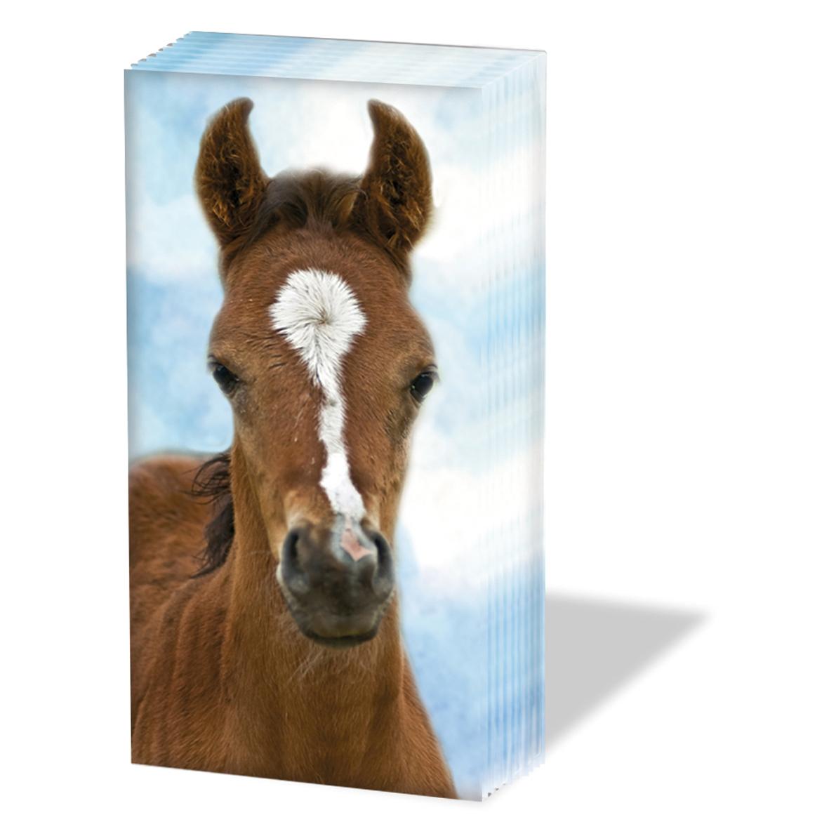 10 bedruckte Taschentücher ,  Tiere,  Everyday,  bedruckte papiertaschentücher,  Fohlen