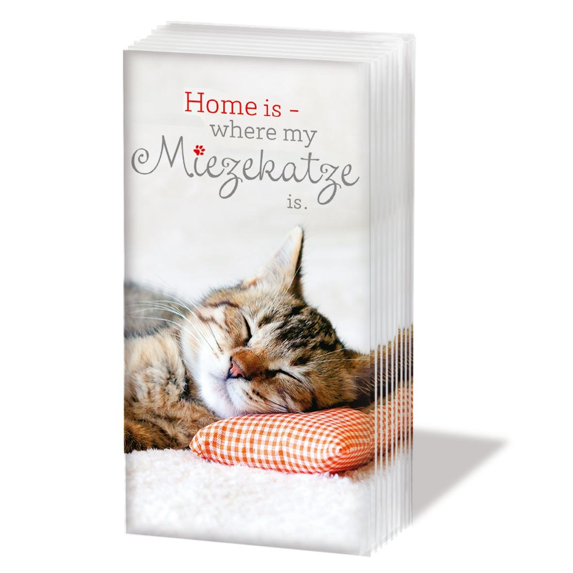 NEU im Shop,  Tiere,  Everyday,  bedruckte papiertaschentücher,  Katze