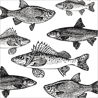 Lunch Servietten Graphic Fishes white,  Tiere - Fische,  Everyday,  lunchservietten