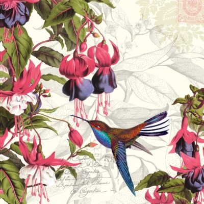 20 Servietten - 33 x 33 cm ,  Tiere - Vögel,  Blumen -  Sonstige,  Everyday,  lunchservietten,  Fuchsien,  Kolibri