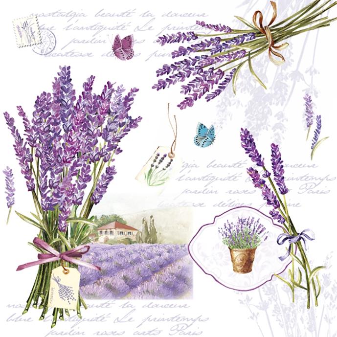 Easy Life,  Regionen - Mediteran,  Blumen - Magariten,  Everyday,  lunchservietten