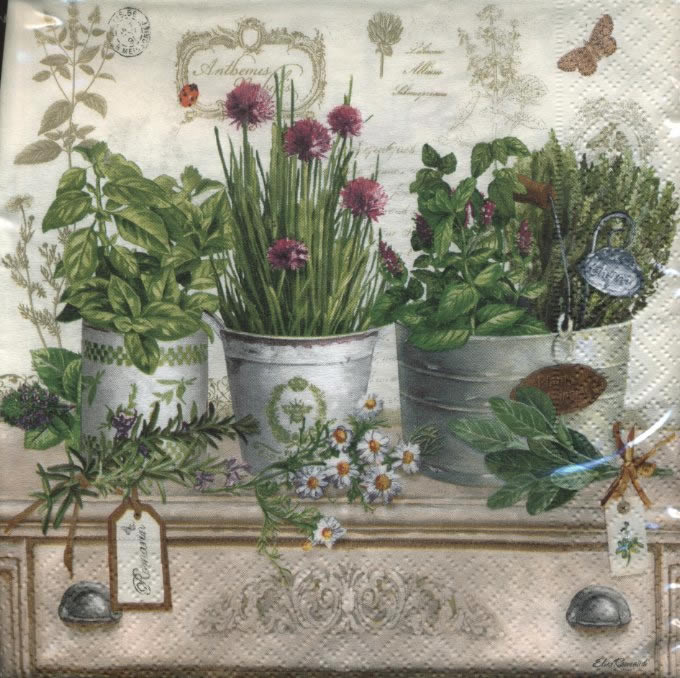 Lunch Servietten Herbarium,  Pflanzen - Küchenkräuter,  Sonstiges - Schriften,  Blumen -  Sonstige,  Everyday,  lunchservietten