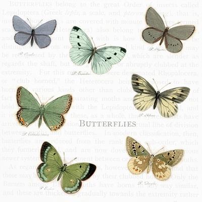 Servietten / Schmetterlinge,  Tiere - Schmetterlinge,  Everyday,  lunchservietten,  Schmetterlinge