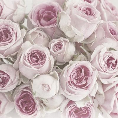 Servietten nach Motiven,  Blumen - Rosen,  Sommer,  lunchservietten,  Rosen