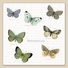 Sagen Vintage design©,  Tiere - Schmetterlinge,  Everyday,  cocktail servietten,  Schmetterlinge