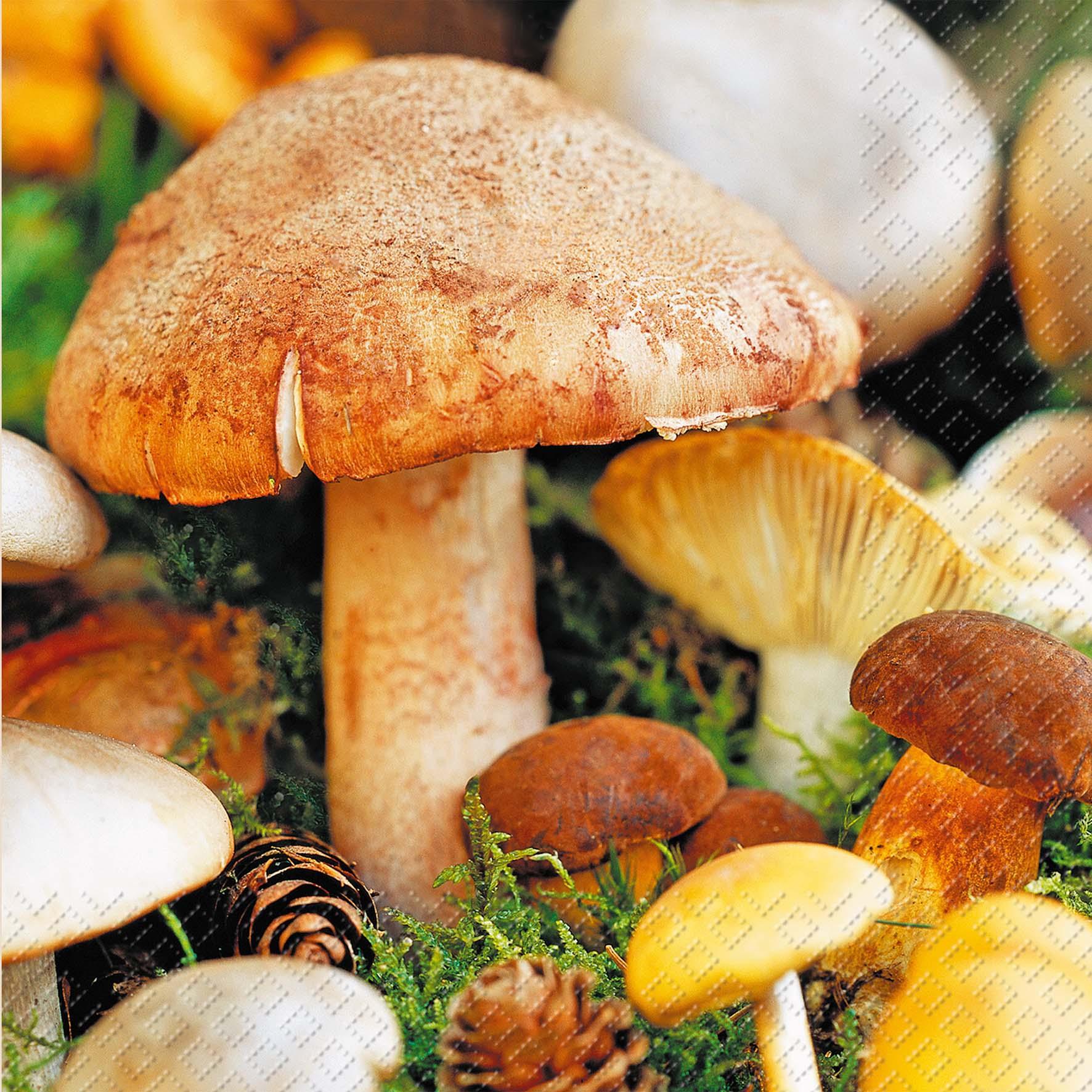 Lunch Servietten Sieni ,  Früchte - Pilze,  Herbst,  lunchservietten,  Pilze